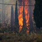 Φωτιά στο Θύριο Βόνιτσας