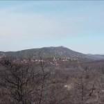 καμμένο δάσος Πάρνηθα