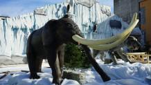 Πάρκο των Παγετώνων