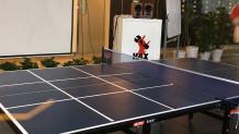 τραπέζι ping-pong