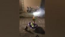 Σκύλος χορεύει δίπλα από γυναίκα με πυροτεχνήματα στο Μεξικό