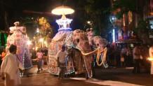 Στολισμένοι ελέφαντες