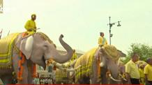 ελέφαντες παρέλαση