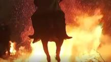 άλογα σε φωτιά