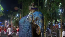 Ελέφαντας στολισμένος - Παραδοσιακή παρέλαση Σρι Λάνκα