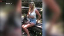 μαϊμού έγδυσε γυναίκα