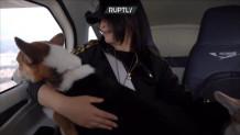 Κίνα- γυναίκα πέταξε με τα  2 σκυλιά της