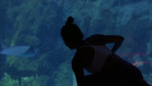 yoga με καρχαρίες