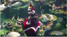 Άγιος Βασίλης/ reuters