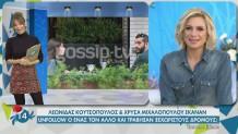 Κουτσόπουλος-Μιχαλοπούλου