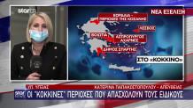 Κατερίνα Παπακωστοπούλου - κορωνοϊός
