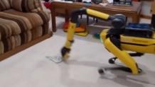 σκύλος ρομπότ