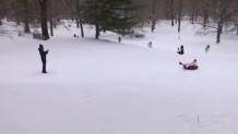 έλκυθρο στο Central Park
