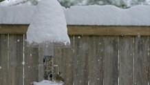 χιόνια ολλανδία