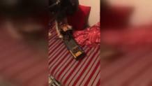 σκυλος εντοπιζει ναρκωτικα