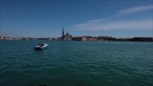 δελφίνια σε κανάλι στη Βενετία