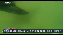 καρχαρίας επίθεση