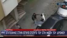 Τουρκία Βία