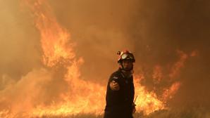 Πυροσβέστης δίνει μάχη με τις φλόγες στην Κινέτα
