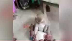 Μαϊμού κλέβει μωρό