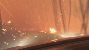 ΗΠΑ: Προσπαθούν να περάσουν μέσα φλεγόμενο δάσος