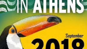 Η αφίσα της εκδήλωσης Brazilian day στο Ζάππειο
