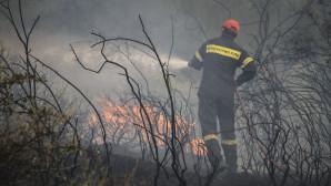 Φωτιές Δυτική Ελλάδα
