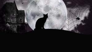 Μαύρη γάτα