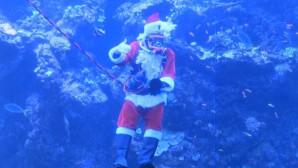 «Άγιος Βασίλης» - δύτης