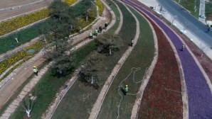 142.000 τ.μ. γεμάτο με λουλούδια