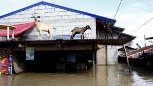 Πλημμύρες στη νότια Ασία