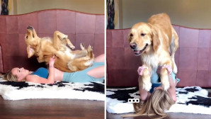 κάνει γιόγκα με τον σκύλο της