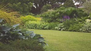 κήπος playroom