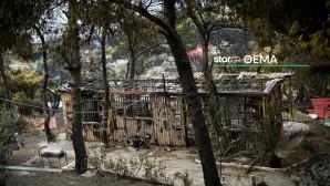 Κινέτα: Η επόμενη μέρα μετά την πυρκαγιά