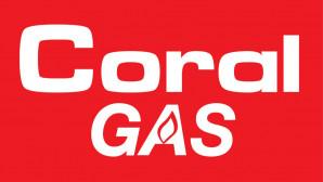 Mini GoGas Καμινέτο Προσφορά Πρατήρια Shell
