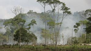 O Αμαζόνιος φλέγεται