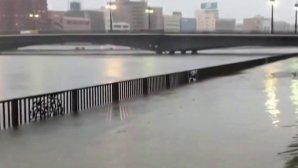 Καταστροφές από τον τυφώνα Hagibis