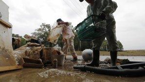 Καταστροφές από τον τυφώνα στην Ιαπωνία