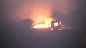 Φωτιά στο Κωπηλατοδρόμιο Μαραθώνα