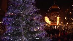 Χριστουγεννιάτικο δέντρο: Στολισμός με κρύσταλλα  Swarovski