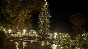 Τρίκαλα ψηλότερο χριστουγεννιάτικο δέντρο