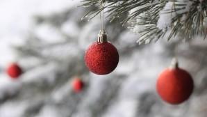 χριστουγεννιάτικο δέντρο χιονισμένο