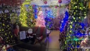Το σπίτι στη Γερμανία με τα 350 χριστουγεννιάτικα δέντρα