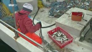 Τούρκοι απείλησαν Έλληνες ψαράδες στην Κάλυμνο