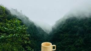 τσάι ιβίσκου