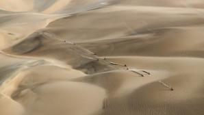 Αμμόλοφοι στο Περού