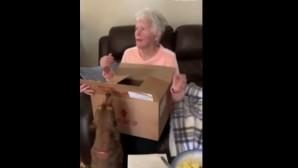 Γιαγιά παίρνει σκυλάκι