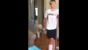 Σκύλος Αντιγράφει Το Αφεντικό Του