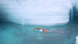 κολυμβητής στα παγωμένα νερά της Ανταρκτικής