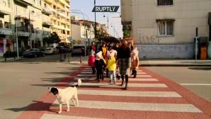 Σκυλίτσα στη Γεωργία